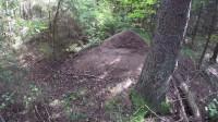 荒野森林 徒步旅行 采蘑菇 荒野生存体验