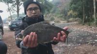 钓鱼实战143, 鱼情有变, 浅水位鳊鱼、鲫鱼连竿