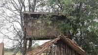 荒野生存  原始技能 生存哥 建造 树屋