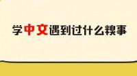 毒角SHOW: 老外学中文到底有多费劲? 仿佛看到了我读英语的样子!