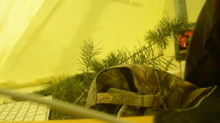 荒野生存 体验之 露营旅行 冬季独自野外帐篷度过三天