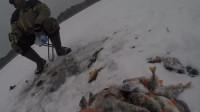 冰钓之钓到大鲈鱼