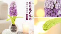 【A639】趣织社_钩针球根花卉盆栽_风信子款教程