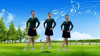 云儿开心广场舞《的士高》现代健身舞 附教学