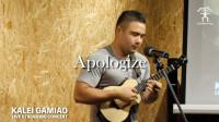 Kalei Gamiao 《Apologize》 尤克里里指弹演奏音乐会 2018 | aNueNue彩虹人