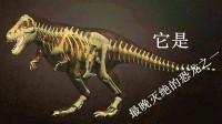 [亲子阿克]霸王龙认知 恐龙游戏 看看它巢穴长啥样吧