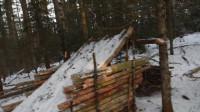 荒野生存体验之我的丛林冬季露营