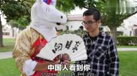 毒角SHOW: 美国街头给老外大秀毛笔字, 中文还能这么玩