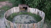 荒野生存 小哥 为鸭子建造鸭舍