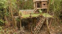 小哥突发奇想居然在亚马逊丛林树上建造起了游泳池