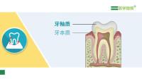 【医学微视】哪些口腔疾病会引起牙痛?