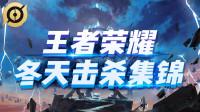 《王者荣耀冬天击杀集锦》第73期: 典韦11杀