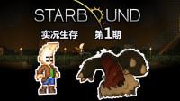 【丁菊长】新的开始~【星界边境 starbound】实况生存第1期