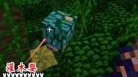 我的世界虚无世界92: 迪哥在雨林, 找到野怪灌木婴, 拿到了宝石