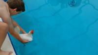 都说鸡不会游泳, 老外亲测把鸡放进游泳池, 结果出乎意料