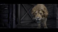 【舍长直播】神奇动物在哪里—《荒野大镖客2》实况51