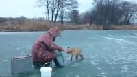 男子在冰面上钓鱼, 突然走来一只小狐狸, 接下来一幕让人心头一暖