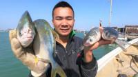 阿烽在海上放了2张大网, 隔夜来收抓到不少鱼, 一堆鲜鱼带回烧烤