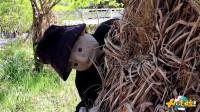 日本人造恐怖村庄,350只玩偶只有一人,网友:恐怖片最佳场所!