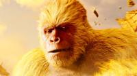 孙悟空会七十二变为何尾巴变不了?他究竟是猿还是猴?