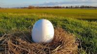 """中国造了一颗会飞的""""蛋"""",吸金超1亿元,猜猜干嘛用的?"""