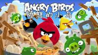 愤怒的小鸟 试玩游戏前三关 胖红表现出色 挑战成功 01