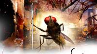 印度神剧《功夫小蝇》连苍蝇都开挂的民族