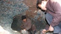 工人挖出宋代钱窖,以为可以一夜暴富,专家赶来后心凉了