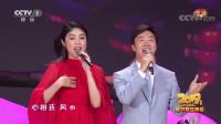 [2019央视春晚]歌舞《今夜无眠》 演唱:费玉清(中国台湾) 陈慧琳(中国香港)