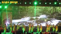 傣族舞蹈《打水的姑娘》