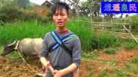 越南农村春节有人还忙农活,女人在家带孩子煮饭,男人在外边耕地