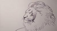 速写雄狮窦老师教画画