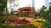 第25届广州园林博览会--海心沙(8)