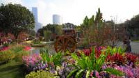 广州第25届园林博览会--海心沙(9)