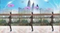 好心情蓝蓝广场舞原创初级步子舞DJ【漂亮的小妹正背面】附教学