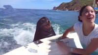 开游艇出海,就可以体验喂养海狮的乐趣,纯野生的那种哦!
