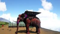 方舟生存进化 帕格纳西亚10 非洲大象!和发射追踪弹的火鸡