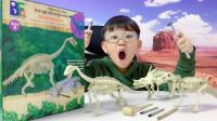 挖掘考古侏罗纪世界公园最大腕龙恐龙化石霸王龙暴虐龙迅猛龙沧龙