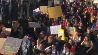 英国数千学生罢课抗议气候变化,首相梅姨回应:上课更重要