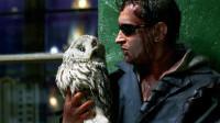 男子从事特殊行业,老板给了他一只猫头鹰,一变身反而把他吓到了