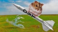 仓鼠也有飞天梦?老外自制火箭将自家仓鼠送上天,仓鼠:头是真晕