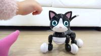 萌娃小可爱的宠物猫咪可真是漂亮呢!—萌娃:这是宝宝最喜欢的玩具啦!