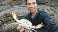 野生青蟹快过季了,小伙每天下去赶海,螃蟹越来越大,靠山吃山,靠海就能吃海鲜,超新鲜
