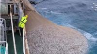 世界上最大的渔船,造价高达4个亿,下水一次掏空一条河的鱼儿!