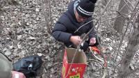 小伙买爬树神器拍视频,路上发现一窝被丢弃的小狗