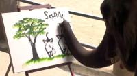 大象画画,你只觉得很神奇,却没想过这背后的心酸故事
