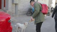 【CITY24】车评人北京街头浪荡之旅 一只耳日常的VLOG