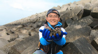 思乡渔夫:送第1只螃蟹就死掉了,只好再捡些螺赔给粉丝