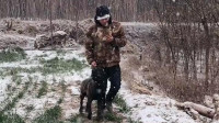 主人在野外遇到危险,狗狗的举动让人感动