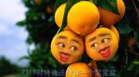爆笑改编橘子版《粉红色的回忆》,橘子的表情太搞笑了!
